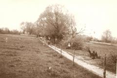 ulica Ewangelicka w stronę cmentarza_1966r.