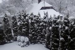 zima_na stronę